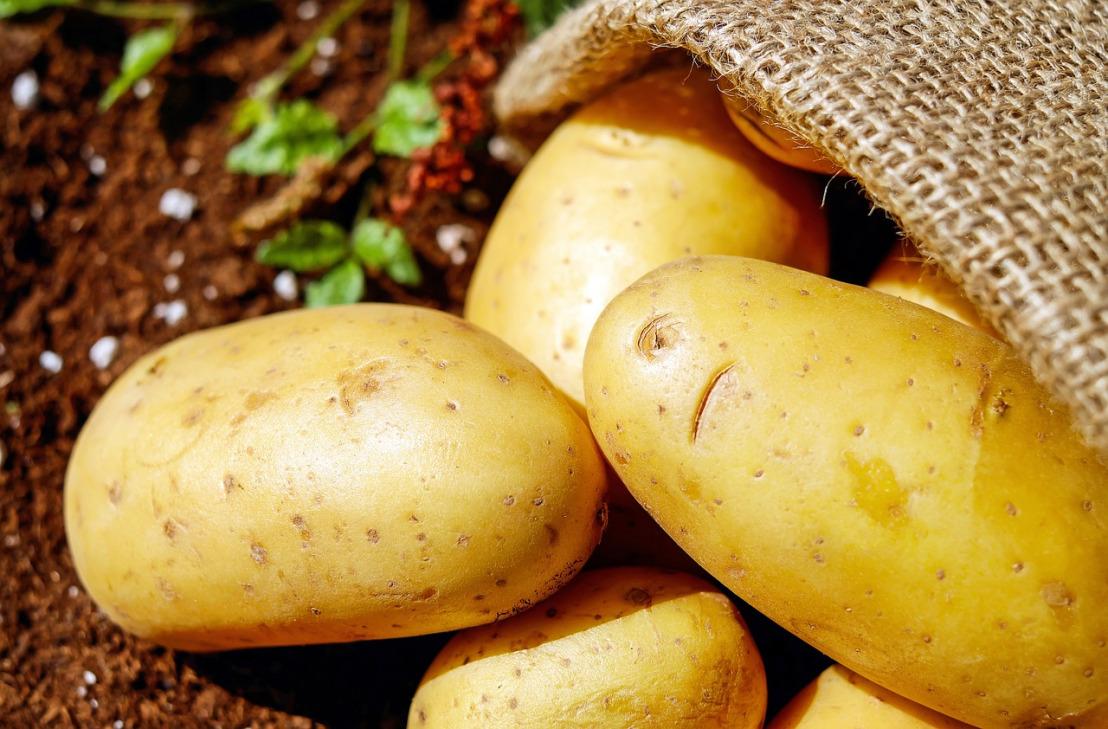 potatoes-1585060_1280
